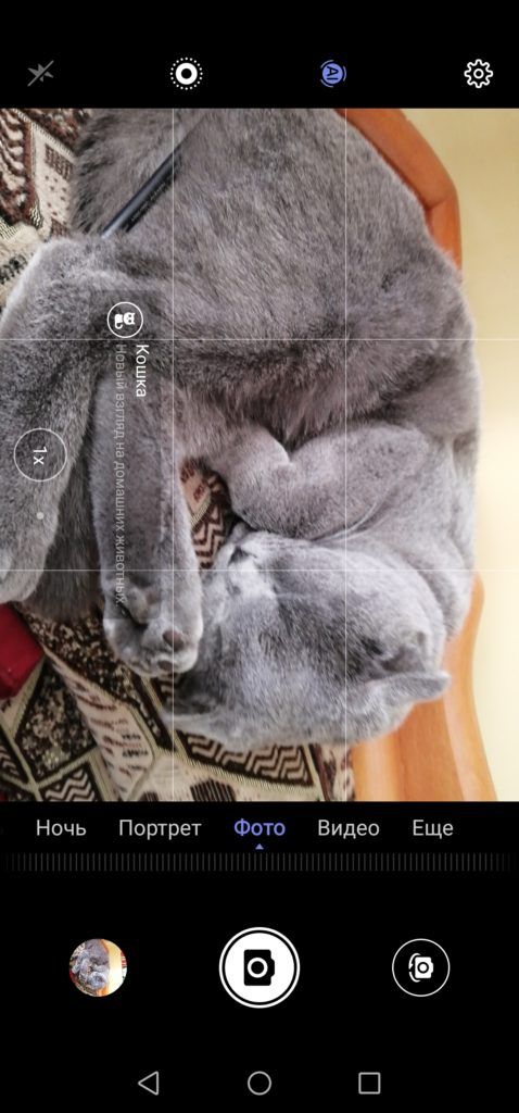 кошка ИИ p30 lite
